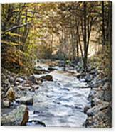 Cold Water Canvas Print