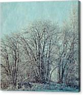 Cold Winter Day Canvas Print