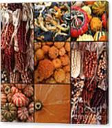 Collage - Corn - Pumpkins - Gourds - Elena Yakubovich Canvas Print