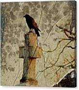 Collage Of Crow Canvas Print