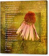 Collective Poem With Echinacea Flower Canvas Print