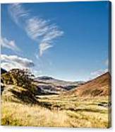 College Valley And Lambden Burn Canvas Print