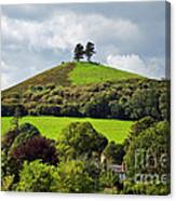 Colmers Hill At Symondsbury Canvas Print