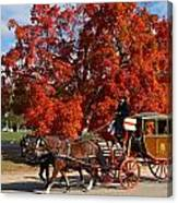 Carriage In Autumn Canvas Print