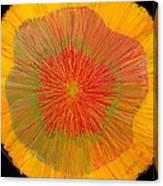 Color Burst 4 Canvas Print