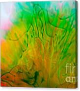 Color Formations II Canvas Print