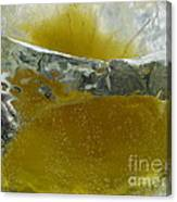 Color In Ice Series 63 Canvas Print
