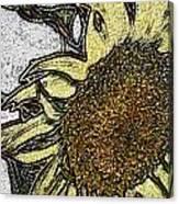 Color Me Sunflower Canvas Print