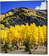 Colorado Autumn Hike Canvas Print