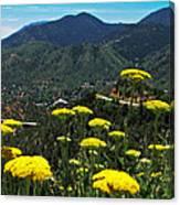 Colorado Rocky Mountain Canvas Print