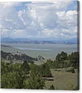 Colorado Meadow Canvas Print