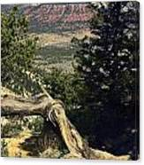 Colorado Plateau Canvas Print