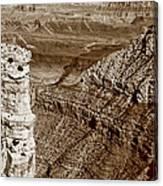 Colorado River View - Grand Canyon - Arizona Canvas Print