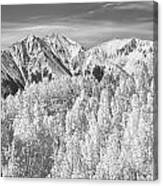 Colorado Rocky Mountain Autumn Beauty Bw Canvas Print
