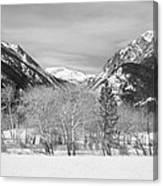 Colorado Rocky Mountain Winter Horseshoe Park Bw Canvas Print