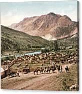 Colorado Roundup 1897 Canvas Print