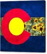 Colorado State Flag In Van Gogh Canvas Print