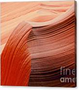 Colored Curves Canvas Print