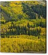 Colored Hillside Canvas Print