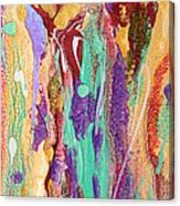 Colorful Abstract Falls Canvas Print