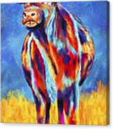Colorful Angus Cow Canvas Print