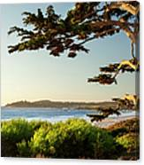 Colorful Beachfront In Carmel-by-the-sea Canvas Print
