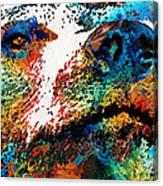 Colorful Bear Art - Bear Stare - By Sharon Cummings Canvas Print