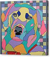 Colorful Dog Bear Canvas Print