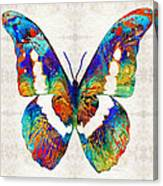 Colorful Butterfly Art By Sharon Cummings Canvas Print