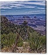 Colorful Canyon Canvas Print