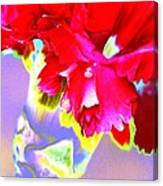 Colorful Carnation Canvas Print