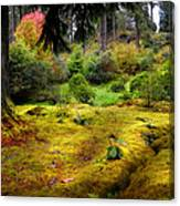 Colorful Carpet Of Moss In Benmore Botanical Garden Canvas Print