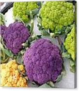 Colorful Cauliflower Canvas Print