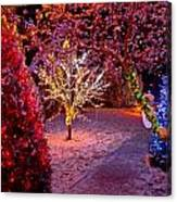 Colorful Christmas Lights On Trees Canvas Print