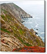 Colorful Cliffs At Point Reyes Canvas Print