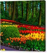 Colorful Corner Of The Keukenhof Garden 4. Tulips Display. Netherlands Canvas Print