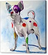 Colorful Dalmatian Chihuahua Canvas Print