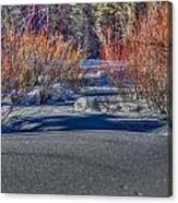 Colorful Despite Snow Canvas Print