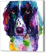 Colorful English Springer Setter Spaniel Dog Portrait Art Canvas Print
