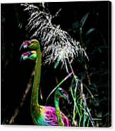 Colorful Flamingos Canvas Print