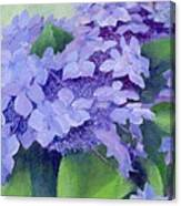 Colorful Hydrangeas Original Purple Floral Art Painting Garden Flower Floral Artist K. Joann Russell Canvas Print