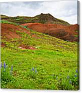 Colorful Iceland Landscape With Green Orange Brown Tones Canvas Print