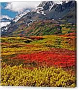 Colorful Land - Alaska Canvas Print