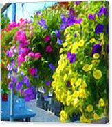 Colorful Large Hanging Flower Plants 1 Canvas Print