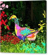 Colorful Lucy Goosey Canvas Print