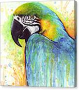 Macaw Painting Canvas Print