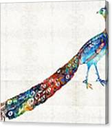 Colorful Peacock Art By Sharon Cummings Canvas Print