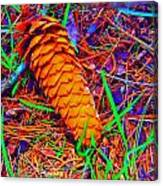Colorful Pinecone Canvas Print