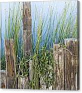 Colorful Planter And Timber Supports Canvas Print