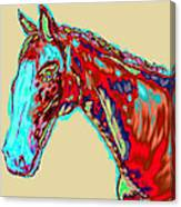 Colorful Race Horse Canvas Print